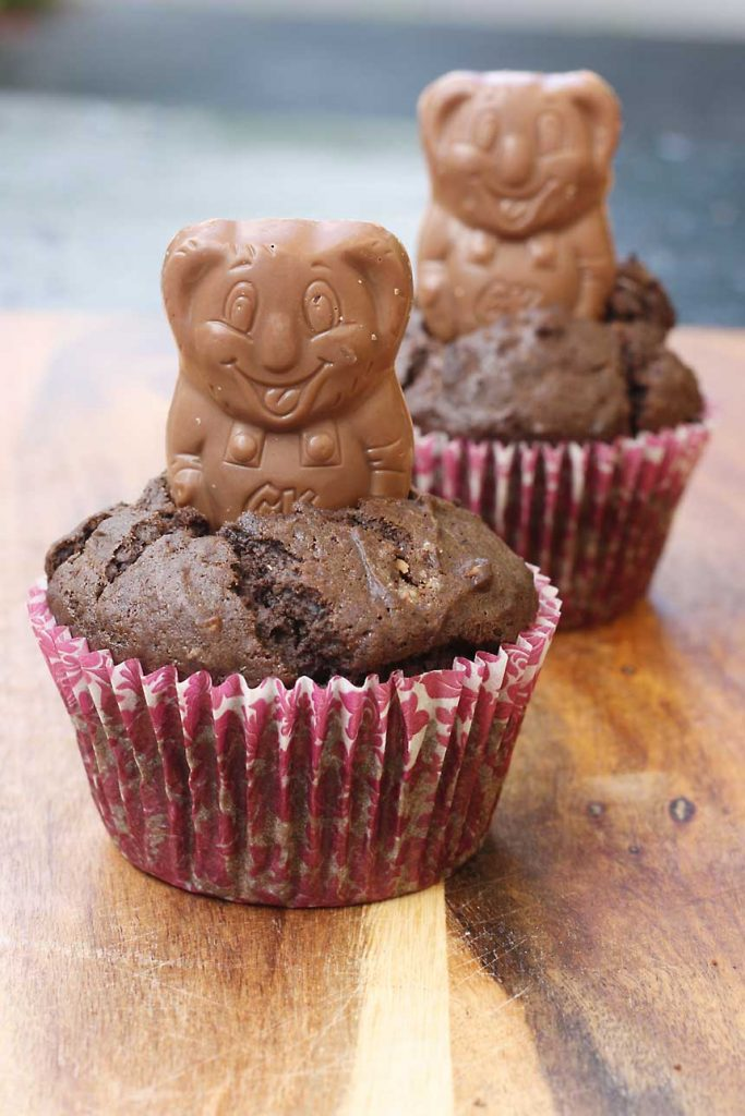 a self saucing chocolate cupcake with a chocolate koala in the top with another in the background
