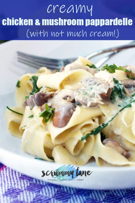 A bowl of creamy chicken and mushroom pappardelle