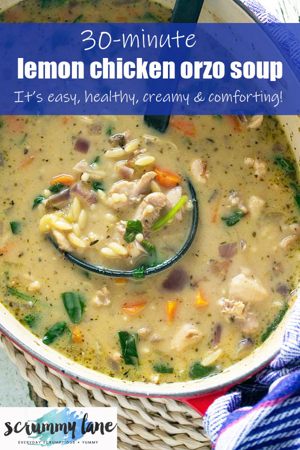 A close up of some creamy lemon chicken orzo soup
