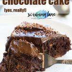 30 minute healthy chocolate cake