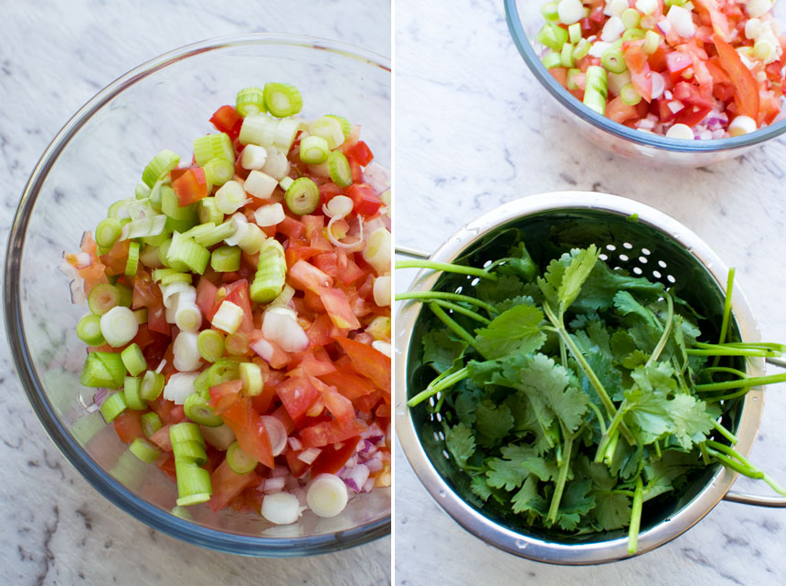 Making tomato salsa